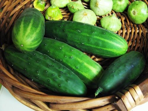 073110_cucumbers
