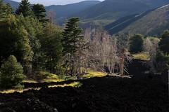Mt. Etna (planetlizzie) Tags: italy rome sicily taormina tropea