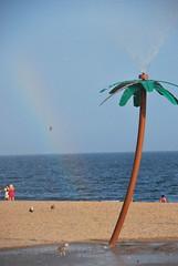 Faint Rainbow (thoth1618) Tags: ocean nyc newyorkcity ny newyork tree beach water brooklyn coneyisland rainbow fake palm boardwalk coneyislandboardwalk fakepalmtree brooklynny coneyislandbeach coneyislandbrooklyn brooklynusa coneyislandbeachandboardwalk