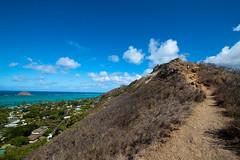 (ninesixoh) Tags: ocean trees sky beach water clouds hawaii oahu path hike trail bushes 1022mm pillbox kailua mokes t1i