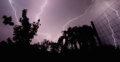 yard-lightning