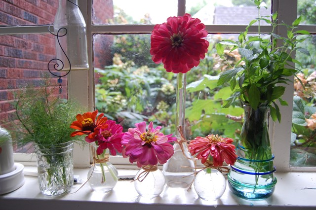herbs&zinnia