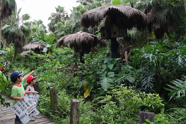 綠世界生態農場0015