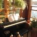 2010.218 . Piano