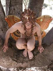Winged Oak Fairy (Robear in Ojai) Tags: mask masks pan fairies satyr greenman faun fauns panflute satyrs