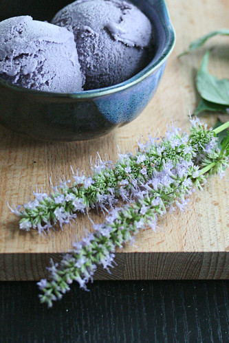 Blueberry and Hyssop Ice Cream