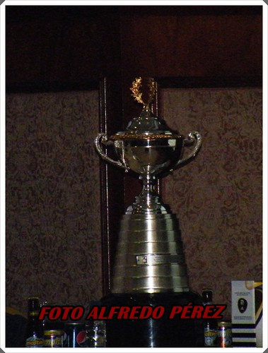 cupFVF2010 008