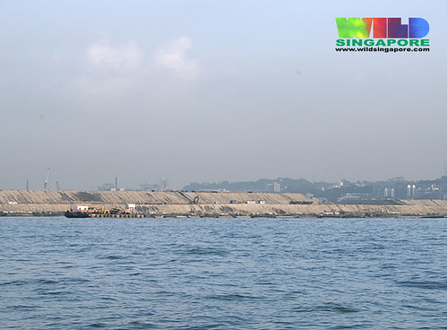 Reclamation at Pasir Panjang container terminal