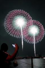 第23回東京湾大華火祭 三重芯変化菊