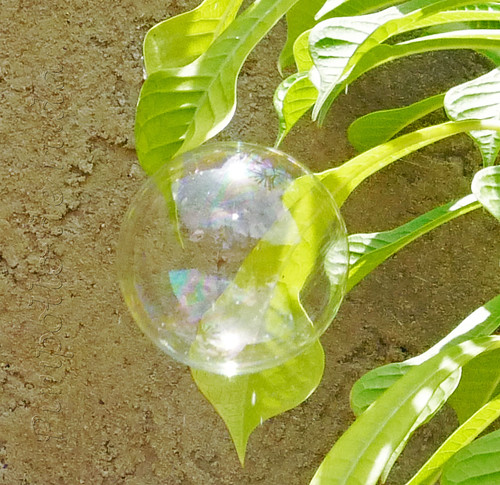 sun in a bubble