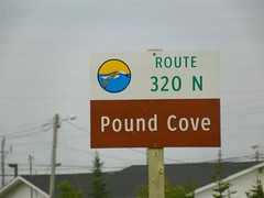 Pound Cove (Medium)