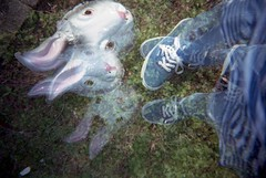 (_acido) Tags: summer white tree rabbit garden holga lomo mask iso exposition vans 100 multi