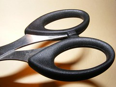 Stainless-Steel-Scissors_72845-480x360 (Public Domain Photos) Tags: office steel objects scissors products supplies stainless