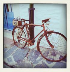 bici-pola