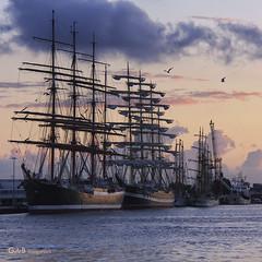 Sail 2010 by gerrit de boorder