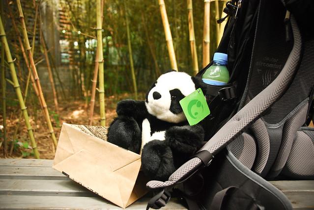 Beijing 2010 [30]