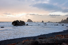 Hidden Beach (kmanohar) Tags: california ca beach northerncalifornia worldheritagesite sunsetbeach pacificbeach hiddenbeach westcoast rockybeach pacificcoast californiacoast redwoodnationalpark delnortecounty seastacks platetectonics klamath californiabeach northerncaliforniacoast temperaterainforest redwoodpark californiatrail beachatsunset redwoodcoast beachtrail northamericanplate pacificrainforest klamathcalifornia subductionzone juandefucaplate tsunamizone californiahiking klamathca californiahikingtrail delnortecoast internationalbiospherereserve redwoodpreserve cascadiasubductionzone northerncaliforniahiking californiarainforest delnortecalifornia delnorteca northwestrainforest cascadiazone tsunamidangerzone juandefucaoceanicplate megathrustearthquakes redwoodreserve cascadiaearthquake cascadiamegathrustzone cascadiacoast marinestack offshorestacks californiarockybeach pacificrockybeach hiddenbeachtrail westcoasthiking pacifichiking pacifichikingtrail