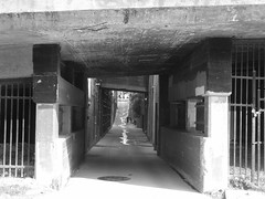 under jackson avenue