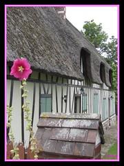 Vieux-Port (Love for mom) Tags: seine village vieuxport eure colombages hautenormandie chaumires toitsdechaumes routedeschaumires