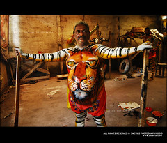 pulikali 2010 (Smevin Paul - Thrisookaran !! www.smevin.com) Tags: dance tiger round 2010 thrissur trichur swaraj trissur pulikkali pulikali