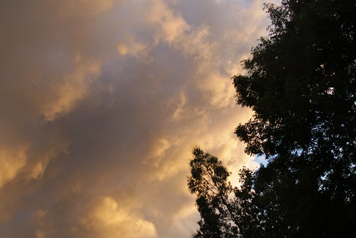 Orange Clouds - 3