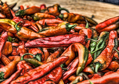 Red Hot Chile Peppers (JoelDeluxe) Tags: hot newmexico verde rojo august peppers hatch nm anaheim joeldeluxe hdr 2010 greenchile chilekonnection