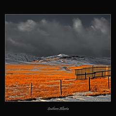 Southern Alberta #036 on Explore #181 Feb 11 2011 (alexander.garin) Tags: bestcapturesaoi elitegalleryaoi mygearandme mygearandmepremium