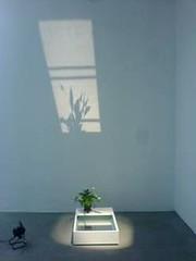 Ulrich Vogl - ADN Galería ARCO 2011