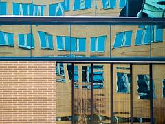 Day 185 of 365 - Faux Graffiti (Andrew Kufahl) Tags: abstract reflection window glass wisconsin mirror nikon warp warped reflect 365 day185 2011 neenah project365 warpedreflection d700 fauxgraffiti nikond700
