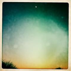 Desert Moon by Jason Willis