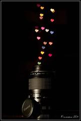Canon Love