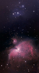 "Reprocess of ""Definitely my last M42..""! (BudgetAstro) Tags: nikond70 nebula astrophotography orion m42 dss runningman astroimaging deepskystacker Astrometrydotnet:status=solved Astrometrydotnet:version=14400 Astrometrydotnet:id=alpha20110202755744"