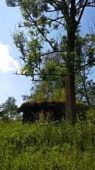 Bieszczady, Poland (trampinthevoid) Tags: mountains polaska bieszczady poland mountain góry summer vigil river san