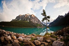On The Banks (Rudy Malmquist) Tags: lake canada mountains tree water forest rockies milk rocks teal rocky lac canadian glacier louise national banff wilderness glacial