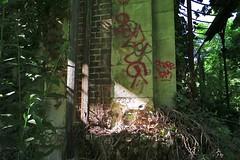 L1062973 (VLBPhotography) Tags: france castle graffiti solitude decay ruin tags desecration derelict chteau deserted emptiness pavillion desolation ruines dcrpitude leicam8 voigtlandercolorskopar21mmf4 leicam82 zeisszm18mmdistagon