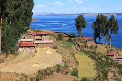 Lake Titicaca: Taquile Island (zug55) Tags: lake peru laketiticaca titicaca landscape lago island terrace terraces paisaje perú taquile terraza laketitikaka altiplano lagotiticaca taquileisland terrazas islataquile agriculturalterraces 5photosaday agriculturalterrace reservatiticaca reservanacionaldeltiticaca