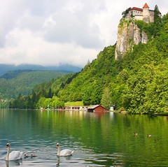The Magic Lake (lovemyblackcat) Tags: lake green castle clouds forest duck swan rocks hills slovenia bled fortress lakebled