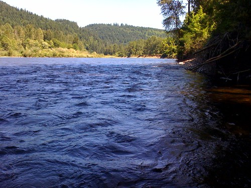 image: McKenzie River, Oregon near Armitage Park