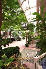 國泰市政尊園:七期都市中的叢林別墅