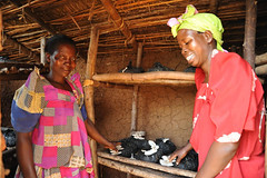 4c. These two women have pooled their resources to produce mushrooms more time-efficiently and more profit