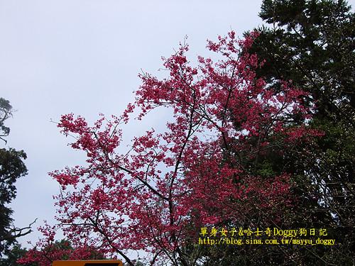 2010-03-10-071