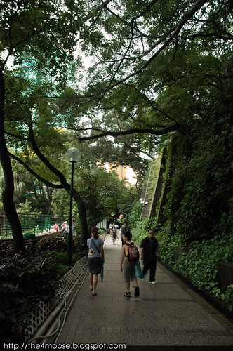 Hong Kong - Kowloon Park