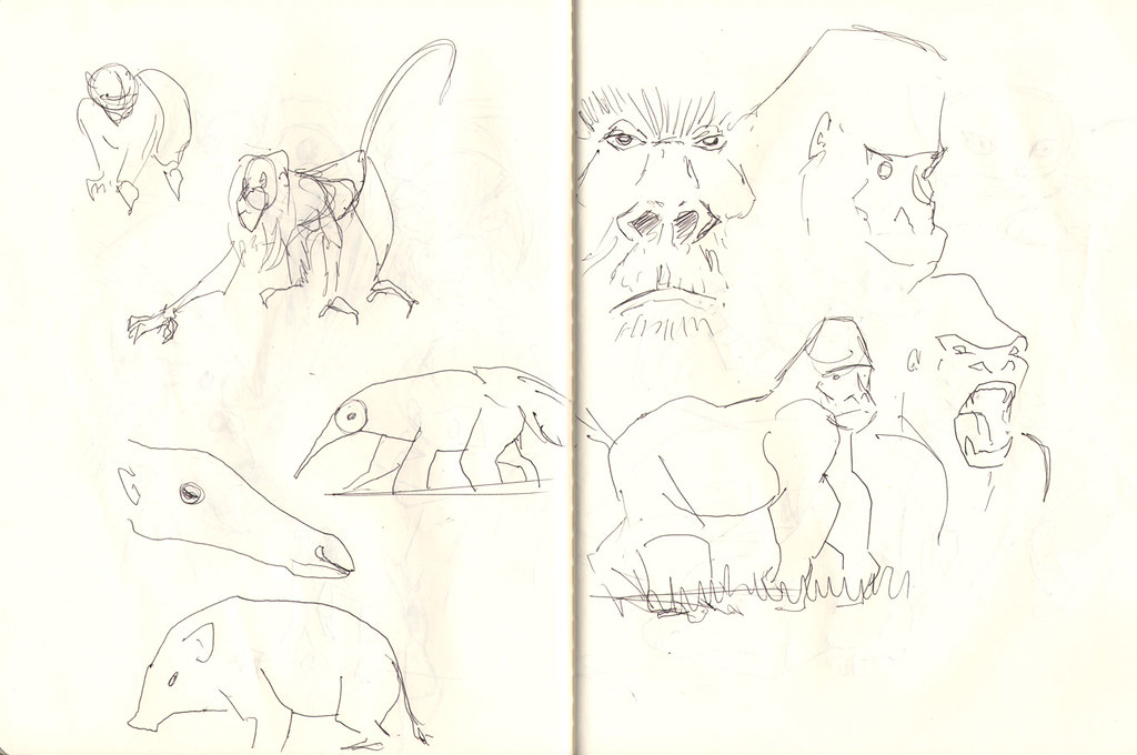 zoo-sketches007