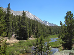 Mosquito Flat (elev. 10220ft) Photo