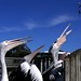 Pelicans at a Fish-Gutting