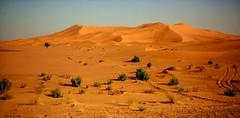 Dunas, desierto del Sahara.Marte-Tierra. Una anatom