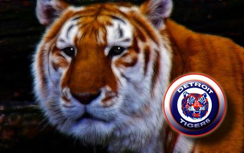 detroit tigers wallpaper. Detroit Tigers Wallpaper 2