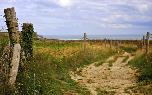 The Path Along The Clifftop