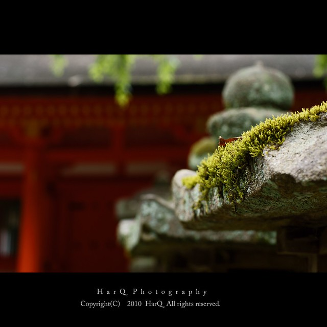 Scenery of Kasuga Shrine *