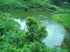 429. Real Munnar (profmpc) Tags: confluence munnar kundala nallathanni muthirappuzha